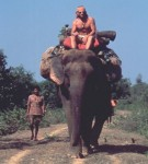 Travels on my Elephant, Mark Shand