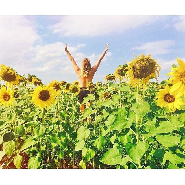 Topless between the sunflowers in Thailand