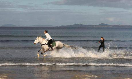 Horse-Powered-Wakeboarding