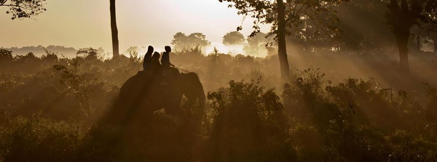 Blind Caroline Casey rides an Elephant across India