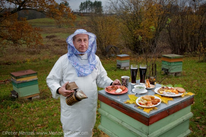 Aivars Radziņš, a forester and beekeeper, wearing his bee-kleeping clothes, with a smoker and his typical day's worth of food in his backyard in Vecpiebalga, Latvia. (From the book What I Eat: Around the World in 80 Diets.) The caloric value of his typical cday's worth of food on a day in the month of October was 3100 kcals. He is 45 years of age; 5 feet, 8.5 inches tall; and 143 pounds. Since Aivars's government salary and his wife's pay as a rural doctor are both very low in this former Soviet republic, he used inherited beehives to create a home business producing honey to supplement their income. Aivars wears a nineteenth-century Latvian outfit when selling honey at local festivals and markets; last summer at the Latvian Song and Dance Festival his traditional dress took first prize. Although rich in culture and architecture, Latvia is among the poorest and least populated members of the European Union; its population has declined since gaining independence in 1991. MODEL RELEASED.