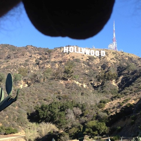 Nutscaping, a travel photography trend, Hollywood (Small)