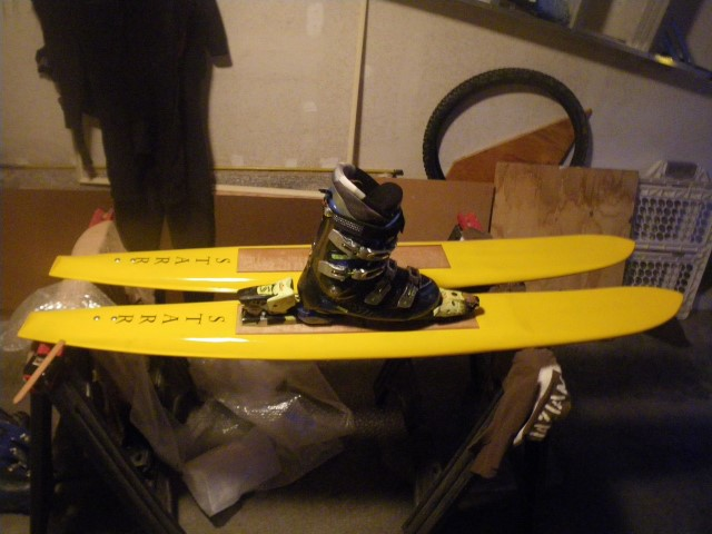 Wave Skis (Small)