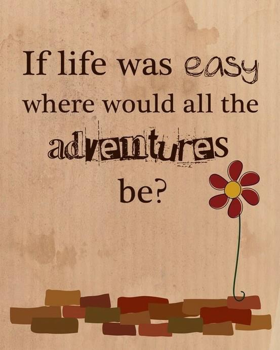if-life-would-be-easy-where-would-all-the-adventures-be