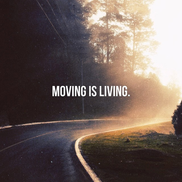 moving-is-living