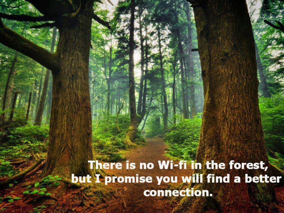 there-is-no-wi-fi-in-the-forest-but-i-will-promise-you-will-find-a-better-connection