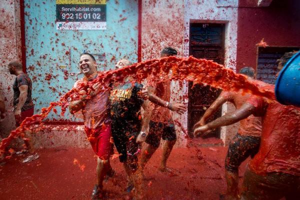 Food fight festival la tomatina valencia spain